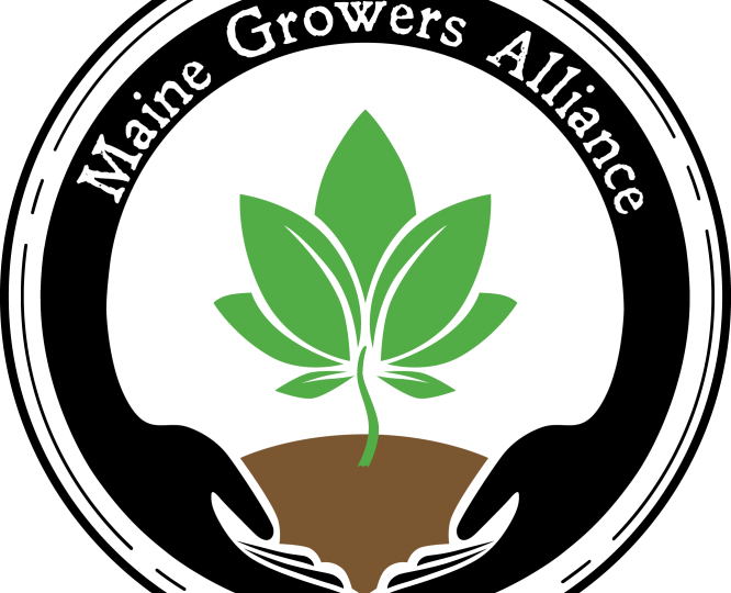 maine growers alliance craft cannabis