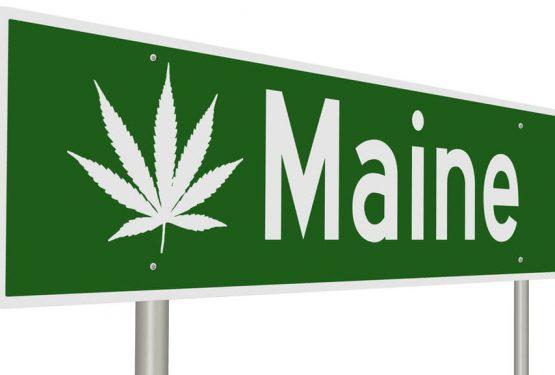 Maine medical cannbis